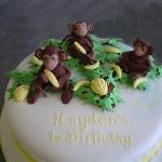 a-monkey-party