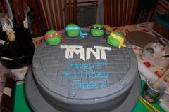 turtles cake 1