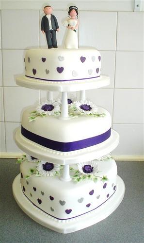 purple-gerbera