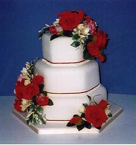 red-roses-on-white-hex-stack