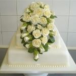 cream-roses-cascade